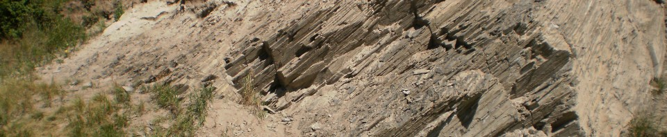 Stratigraphic cross section at Exshaw, Alberta