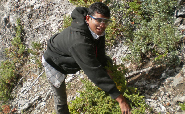 Geology Field Work - 2012