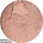 fluorite-1-PPL