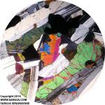 Plagioclase (Cumulus); Clinopyroxene (intercumulus)-4X-xpl
