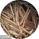 Spinifex Texture - 4x PPL (~5mm across)