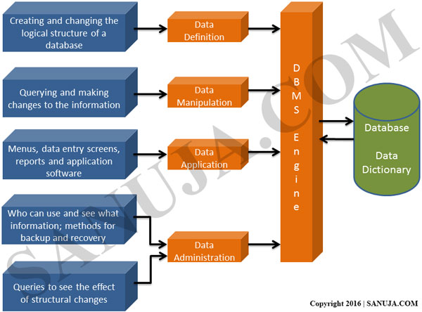 Database Management System (DBMS) Diagram